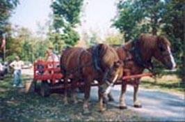 wagonrides.jpg